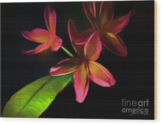 Digitized Sunset Plumerias #2 Wood Print