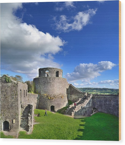 Dinefwr Castle 1 Wood Print