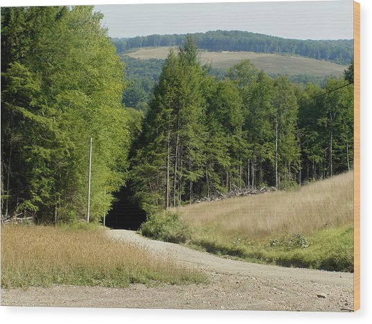Dirt Road Through The Mountains Wood Print by Jeanette Oberholtzer