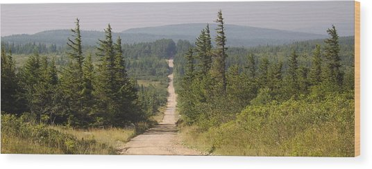 Dirt Road To Dolly Sods Wood Print