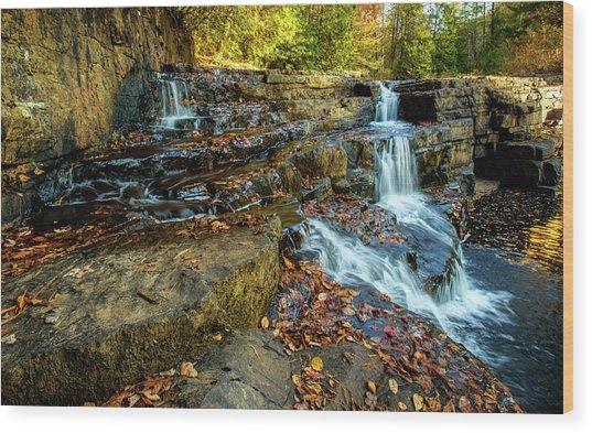 Dismal Creek Falls Horizontal Wood Print