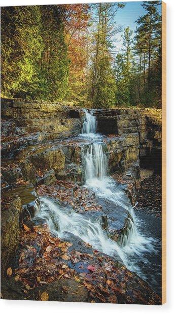 Dismal Falls #3 Wood Print