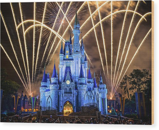 Disney World Wood Print