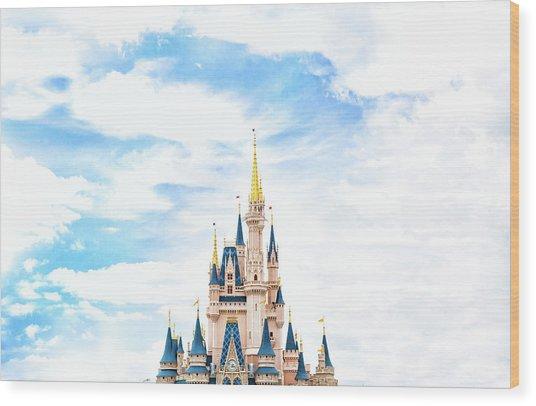Disneyland Wood Print