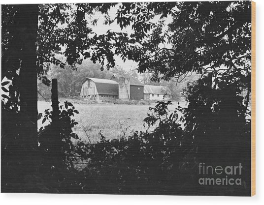 Distant Farm Wood Print