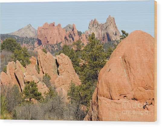 Distant Garden Of The Gods From Red Rock Canyon Wood Print