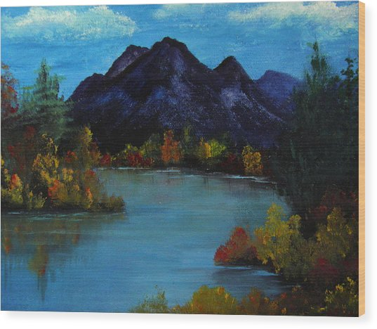 Distant Mountain View Wood Print by Rhonda Myers