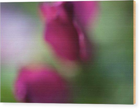 Distant Roses Wood Print