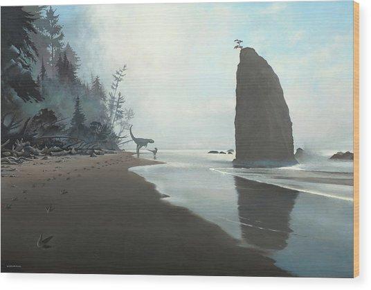 Distant Shores Wood Print