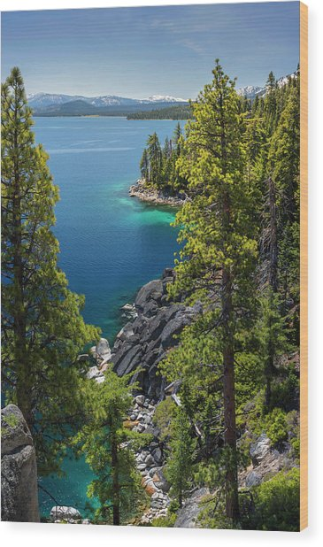 Dl Bliss Lookout By Brad Scott Wood Print