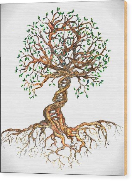 Dna Tree Of Life Wood Print