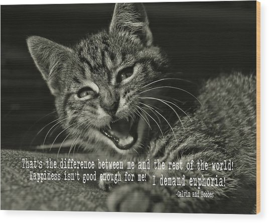 Do Not Start With Me Quote Wood Print by JAMART Photography