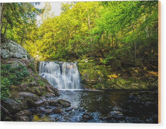 Doans Falls Lower Falls Wood Print