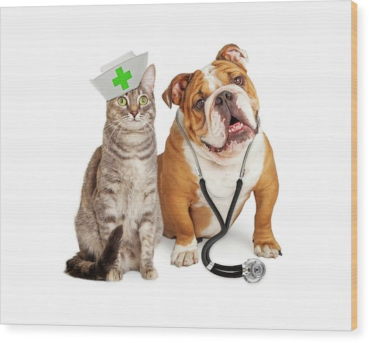 Dog And Cat Veterinarian And Nurse Wood Print
