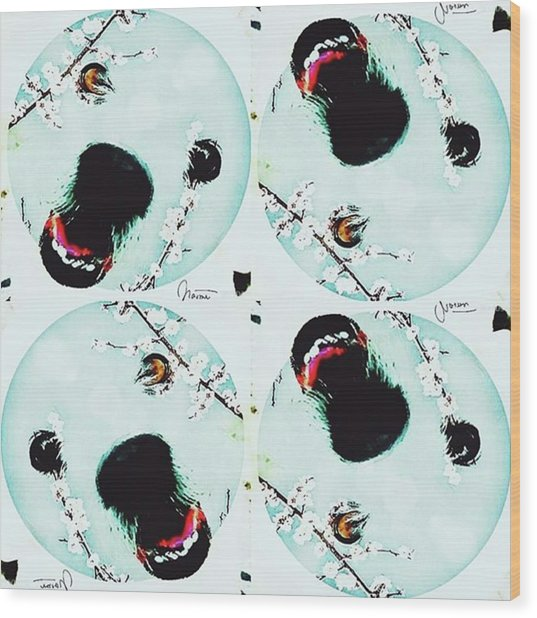Dog Blossoms  Wood Print