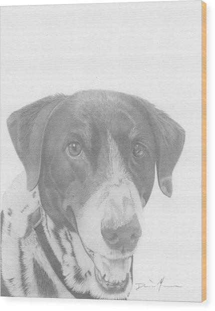 Dog Drawing Orion Wood Print