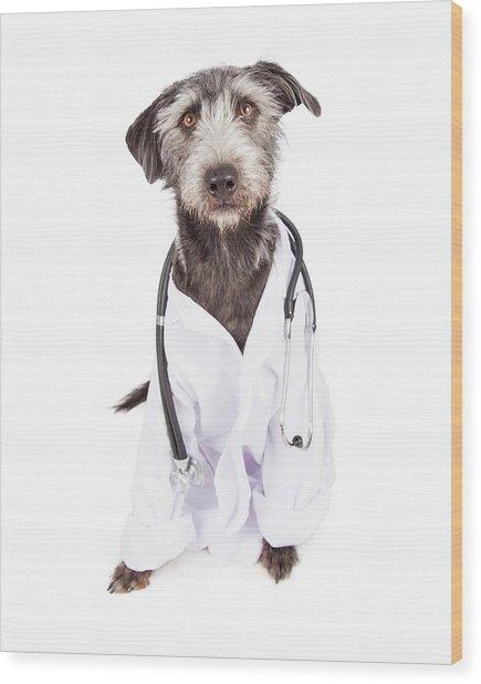 Dog Dressed As Veterinarian Wood Print