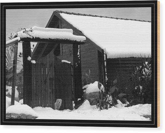 Dog In Snow Wood Print by Arik Baltinester