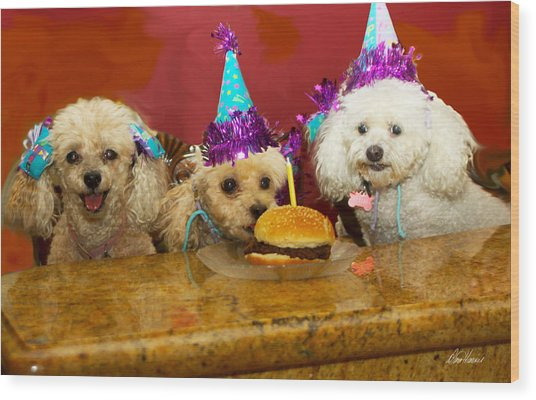 Dog Party Wood Print