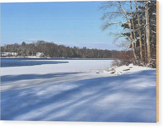 Dog Pond In Winter 1 Wood Print