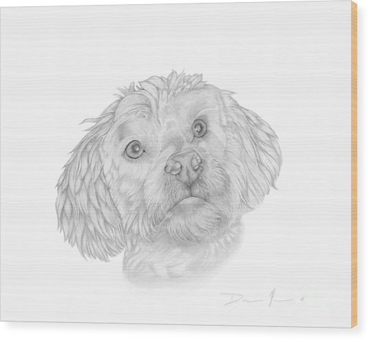 Dog Portrait Marsh Mellow Wood Print