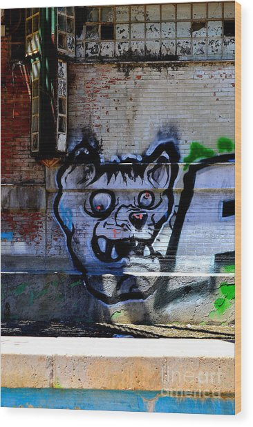 Dog River         ' Graffiti ' Wood Print by Urban Artful