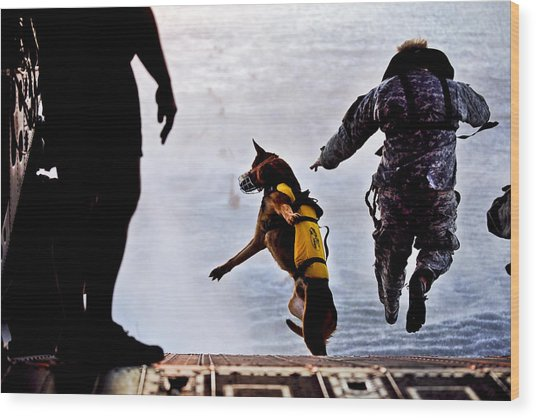Military Working Dog Wood Print