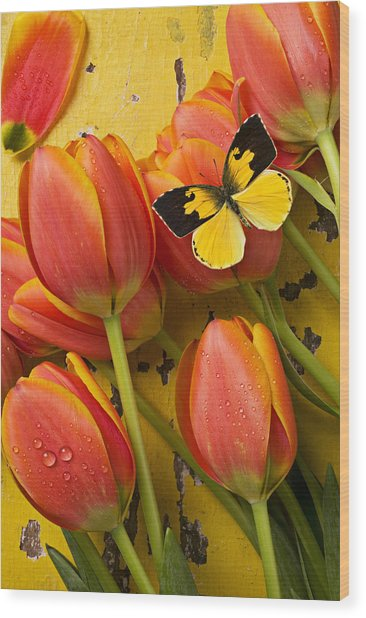 Dogface Butterfly And Tulips Wood Print