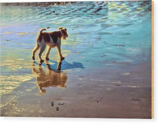 Doggone Beachy Day Wood Print