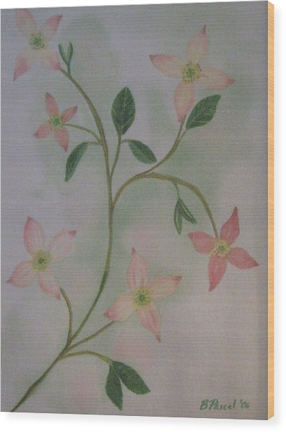 Dogwood Spring Wood Print by Barbara Pascal