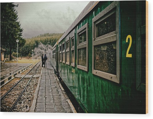 Dolene Railway Station Bulgaria Wood Print