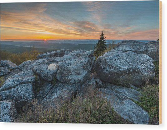 Monongahela National Forest Dolly Sods Wilderness Sunrise Wood Print