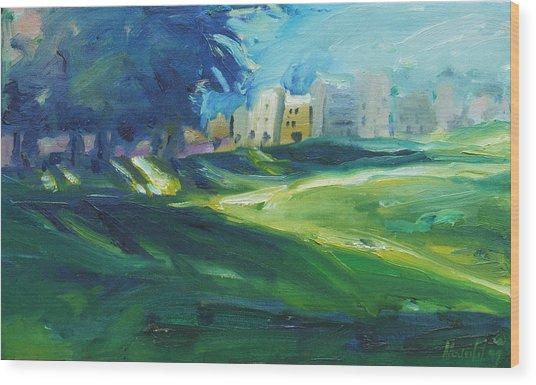 Dolores Park Wood Print