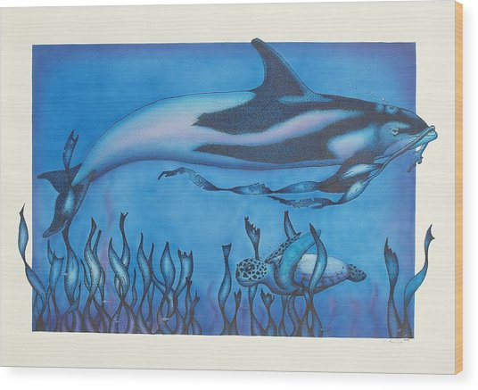 Dolphin And Turtle Wood Print by Erik Loiselle