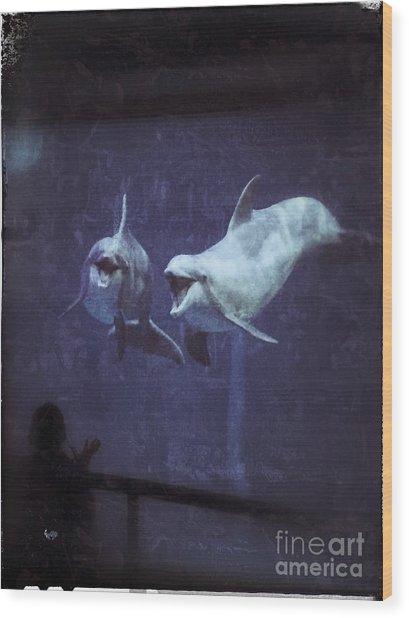 Dolphinspiration Wood Print