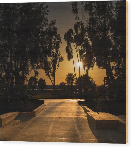 Dominguez Hills Sunset Wood Print