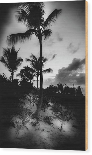 Dominicana Beach Wood Print