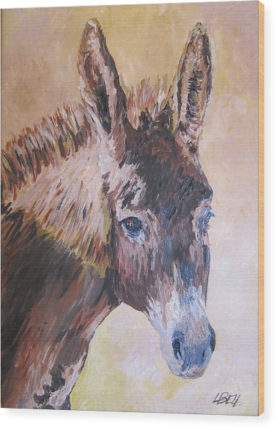 Donkey In The Sunlight Wood Print by Leonie Bell