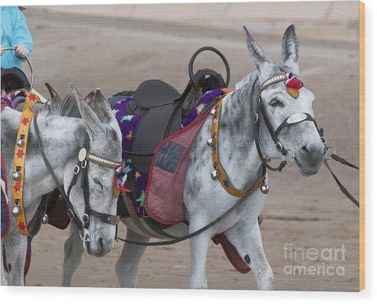 Donkeys On Blackpool Beach Wood Print