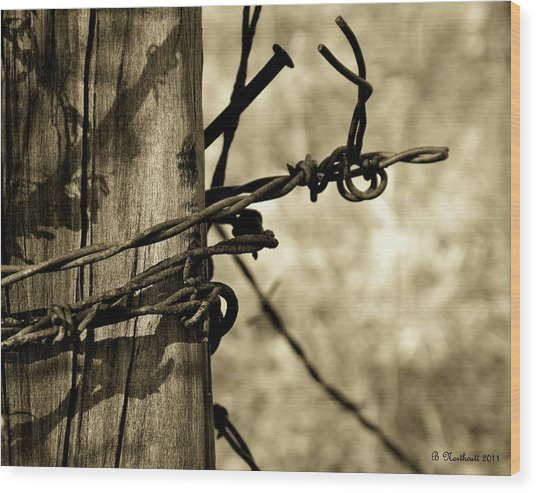 Don't Fence Me In 2 Wood Print