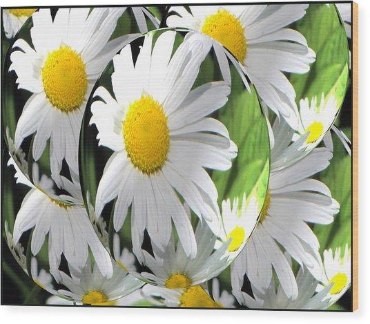 Doo Wop Daisies Wood Print