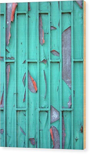 Door Wood Print by Jez C Self