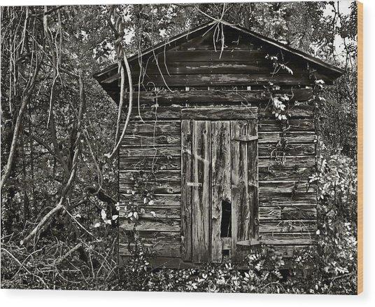 Door Met Foot Wood Print by David A Brown