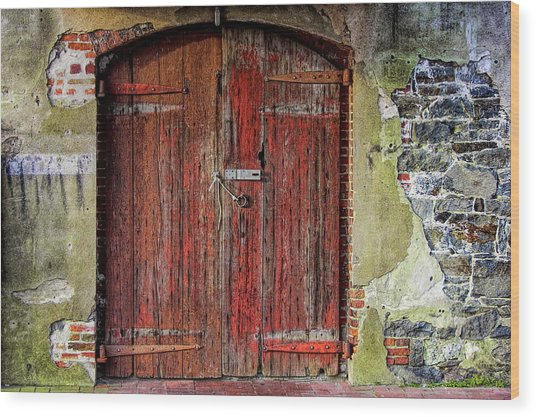 Door To Discovery Wood Print by JAMART Photography