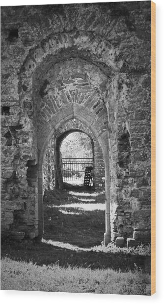 Doors At Ballybeg Priory In Buttevant Ireland Wood Print