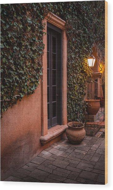 Doorway Through The Vines Wood Print