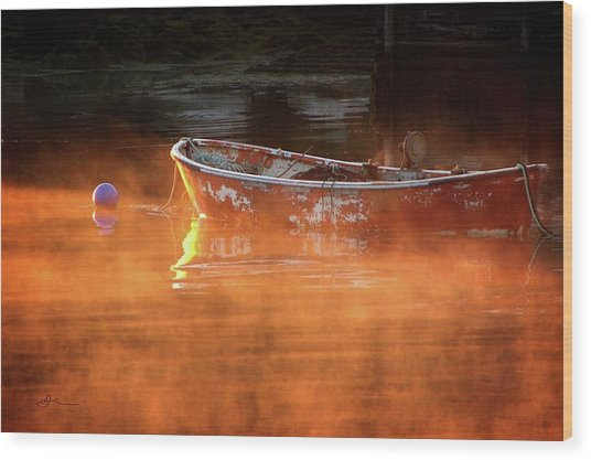 Dory In Orange Mist Wood Print