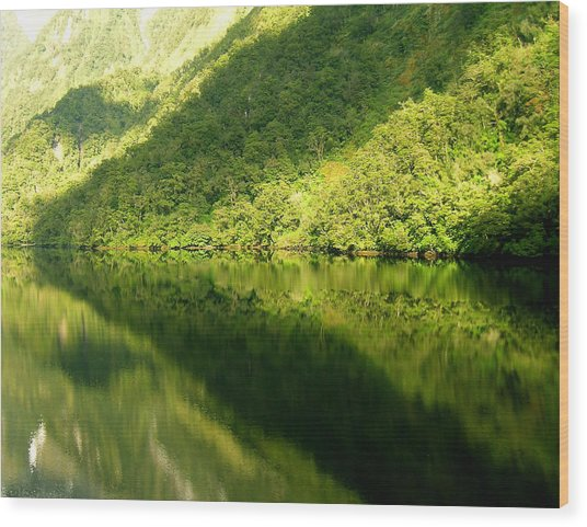 Doubtful Sound, New Zealand No. 4 Wood Print