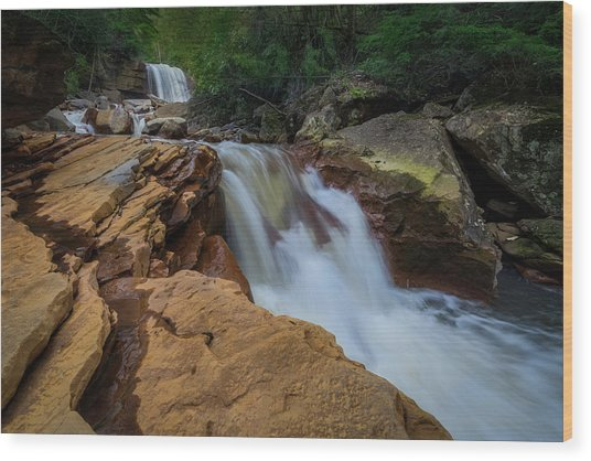 Douglas Falls Wood Print by Michael Donahue