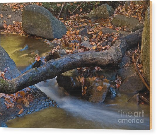 Down By The River Wood Print by Robert Pilkington